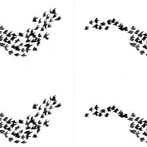 Birds of a Feather - Black/Grey