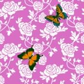 Rbutterfly_roses_shop_thumb