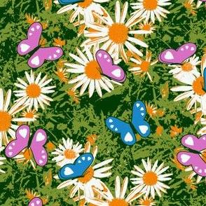 Butterflies Love Wild Daisies