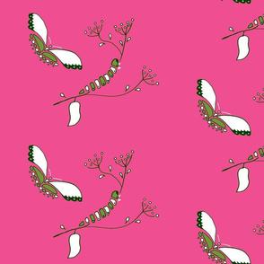mariposa, rosa su historia