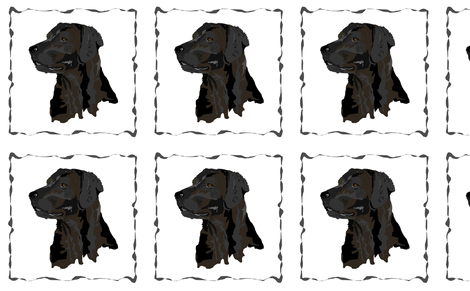 Black Lab Pillow Squares