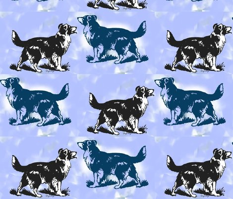 Rrrrborder_collie_on_blue_shop_preview