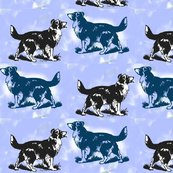 Rrrrborder_collie_on_blue_shop_thumb