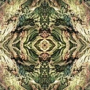Gnarled Tree Bark 2 S