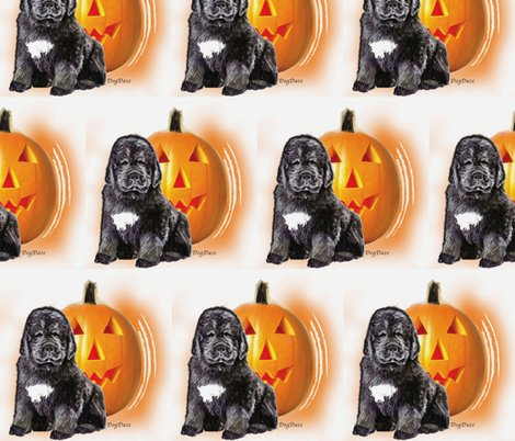 Rrrrhalloween_newf_puppy_shop_preview