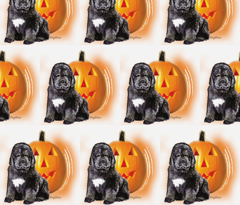 halloween_newf_puppy fabric by dogdaze_ on Spoonflower - custom fabric