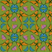 Rbutterflies.ai_shop_thumb