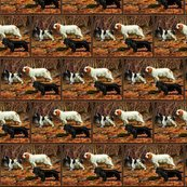 Rrspaniel2_shop_thumb