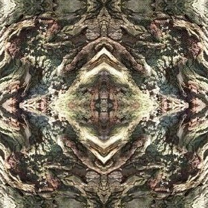Gnarled Tree Bark 3 S
