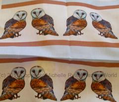 Stripey little barn owls