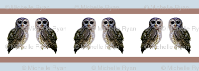 Stripey little spotted owls