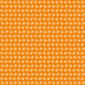 Snail on Mandarin Orange