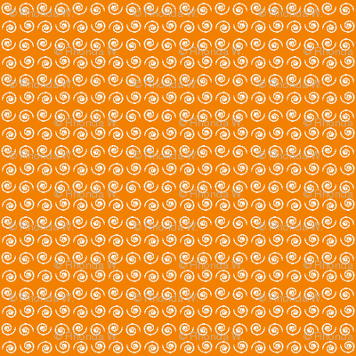 Snail on Mandarine Orange