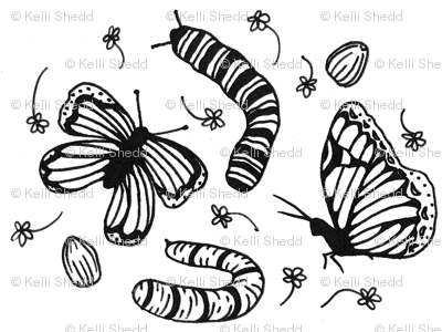 The Flutter Cycle- Black & White