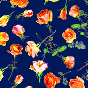 roses navy blue col. 12