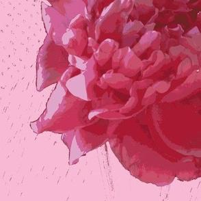 peony silk crepe de chine-pink