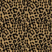 Rrleopardprint_ed_ed_shop_thumb