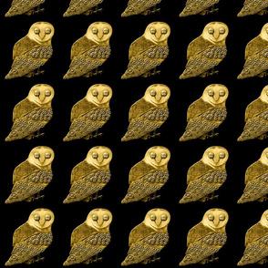 Robo Owl