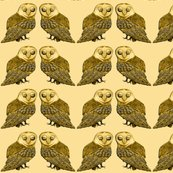 Rrobo_owl_twins_pale_shop_thumb