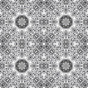 Monochrome Kaleidoscope - 1