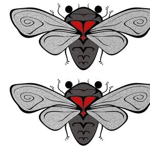cicada_10x4