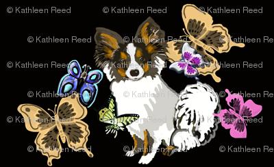 papillon and butterflies