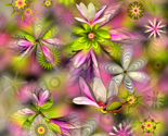 Rmagnolia_big_flowerpaper_fl_thumb