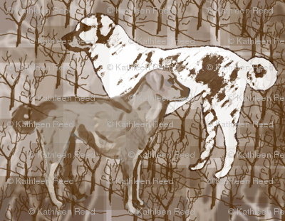 Anatolian Shepherd collage