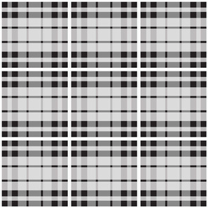 UMBELAS PLAID 4