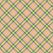 Rr004_plaid_copy_shop_thumb