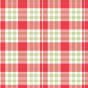 Willow Watermelon girls plaid