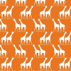 ks_giraffe