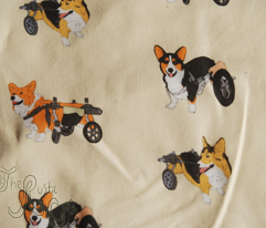 Rrrfbrczwheelcorgie_comment_85735_preview