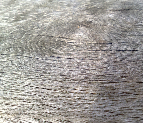 woodgrain detail (big) fabric by handmadebyclairebear on Spoonflower - custom fabric