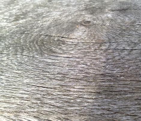 woodgrain detail (big) fabric by handmadebyclairebear on Spoonflower - custom fabric