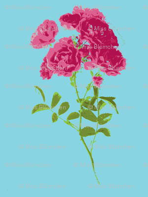 tea rose stripe small turquoise