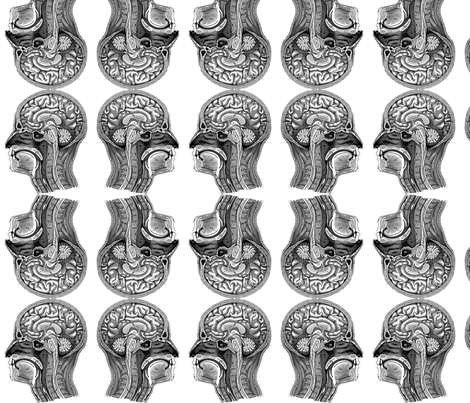 HeadAnatomy-White fabric by mbsmith on Spoonflower - custom fabric