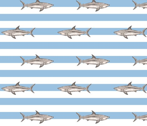 Rsharkpatternchaud_shop_preview