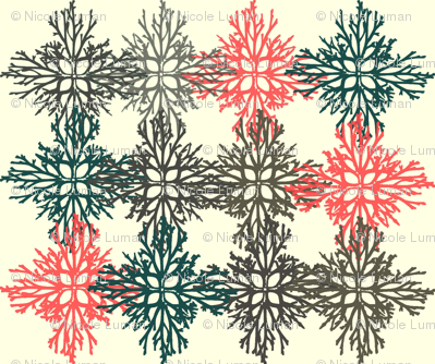 Root Snowflakes