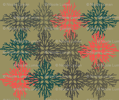 Root Snowflakes dark ground