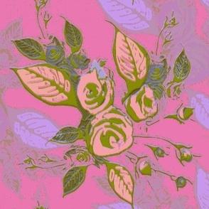 Roses soft magenta