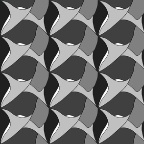 sharks_tooth_grey