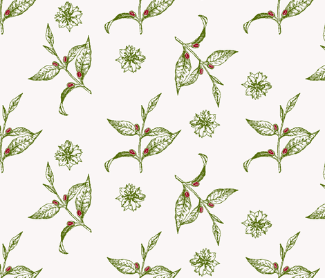 Coffee Botanical fabric by kdl on Spoonflower - custom fabric