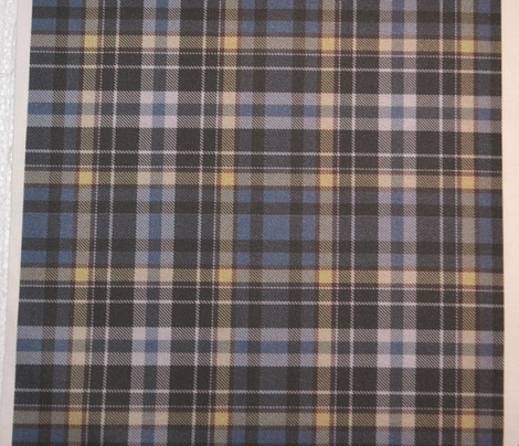 Blue and Yellow plaid