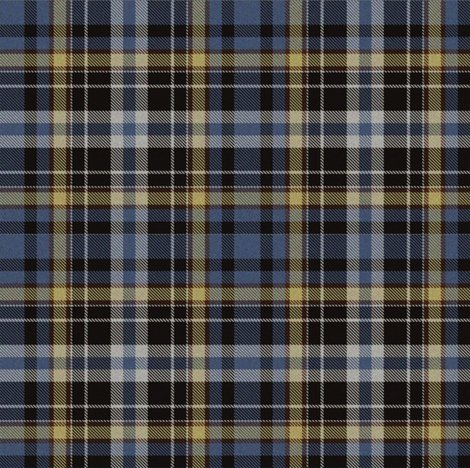Rrrbig_blue_and_tan_tartan_shop_preview