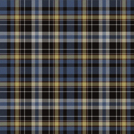 Blue and Yellow plaid fabric by eclectic_house on Spoonflower - custom fabric