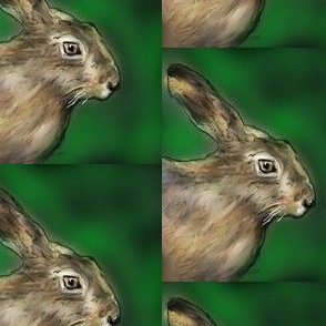 little_scare_hare