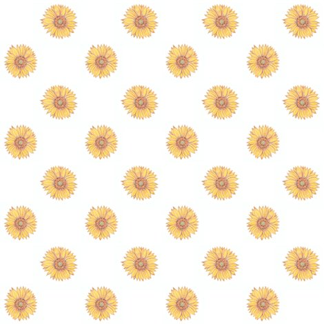 Rrrrsunflowers_shop_preview