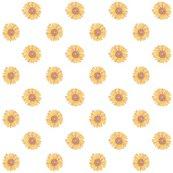 Rrrrsunflowers_shop_thumb