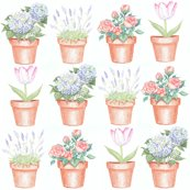 Rrrpottedplants_shop_thumb